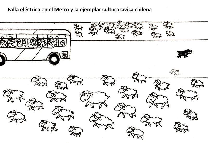 ovejas el metro y cult civica nov 14